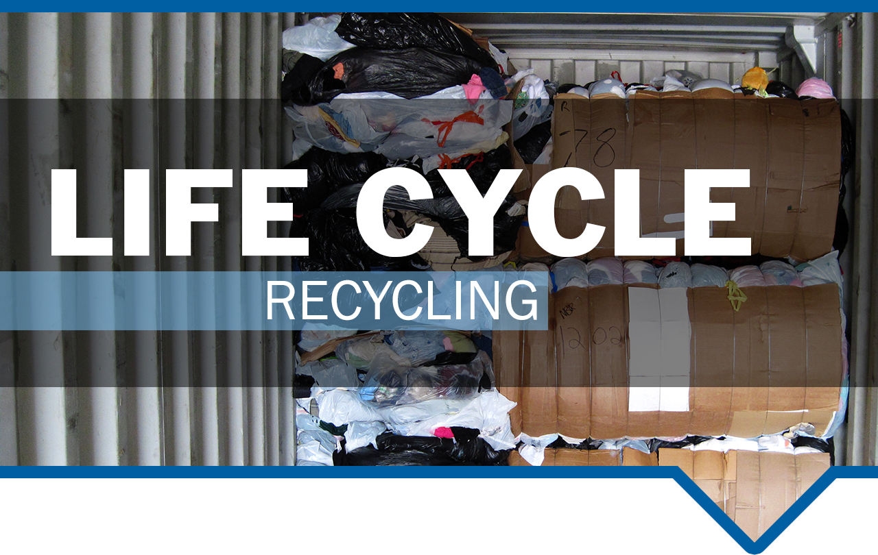 WHS1051_Life Cycle_Banner