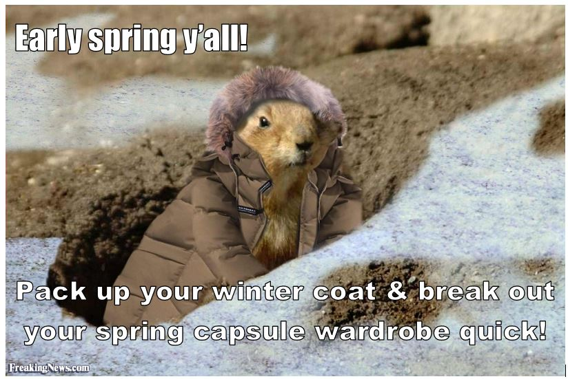 groundhogspring